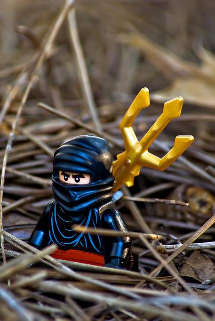 Lego a day